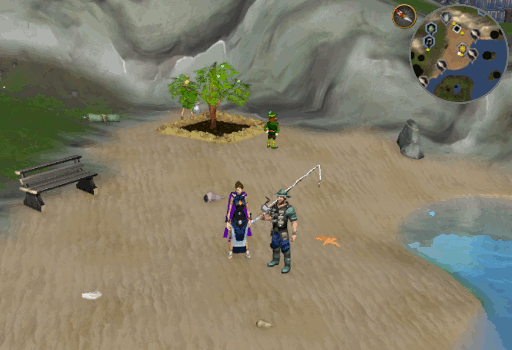 fish flingers guide runescape