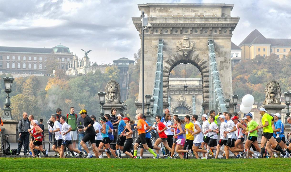 marathon guide