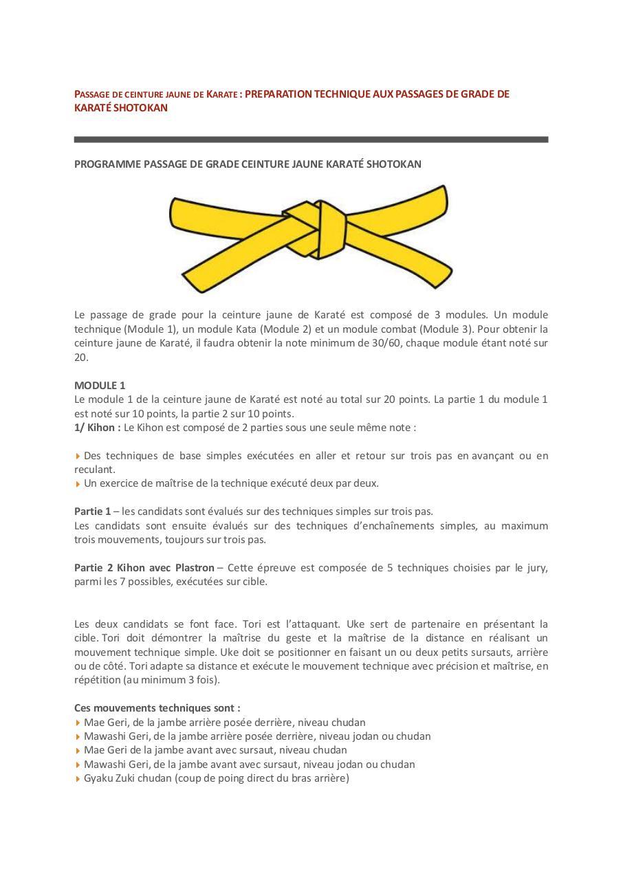 karate techniques pdf