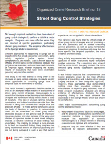 effective crime prevention strategies pdf