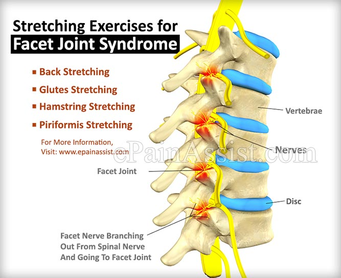 facet joint exercises pdf