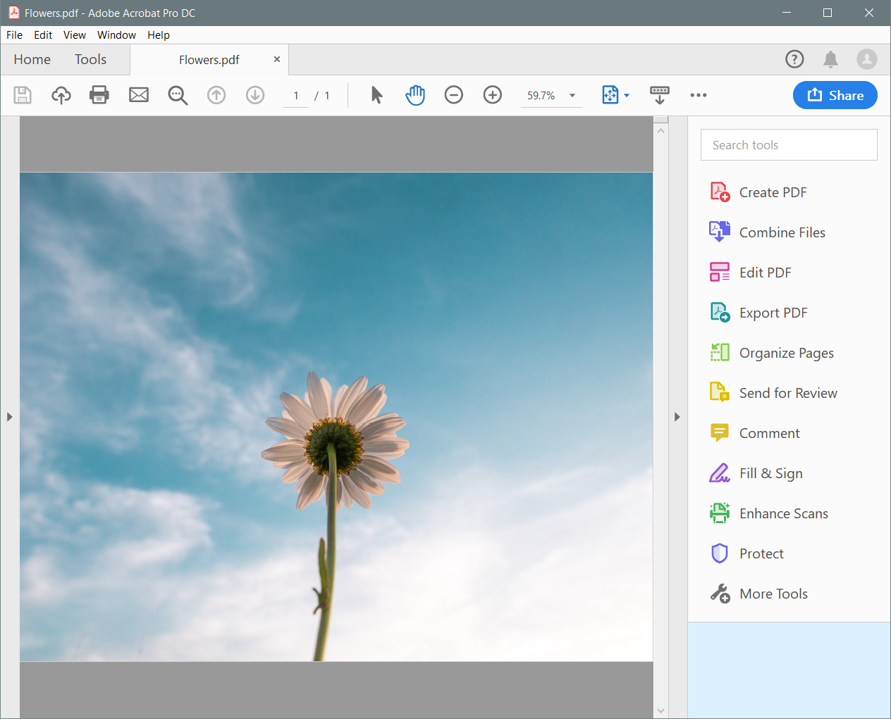 how to change pdf to jpg in windows 10